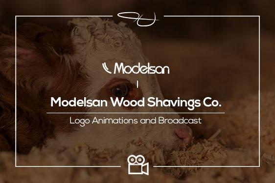 Modelsan Wood Shavings Co. – Logo Intro & Broadcast Project 2019